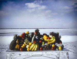 BAXTER&, IAIN, light box, Still Life, Winter Vista, 1995-1996, 48x62x8in.Low